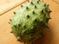Kiwano-or-Horned-Melon-spikes