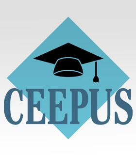 33519-8995-ceepus