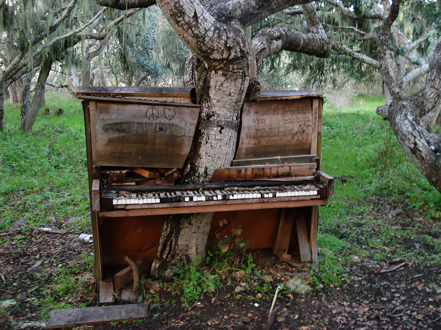 nature-reclaiming-abandoned-places-11