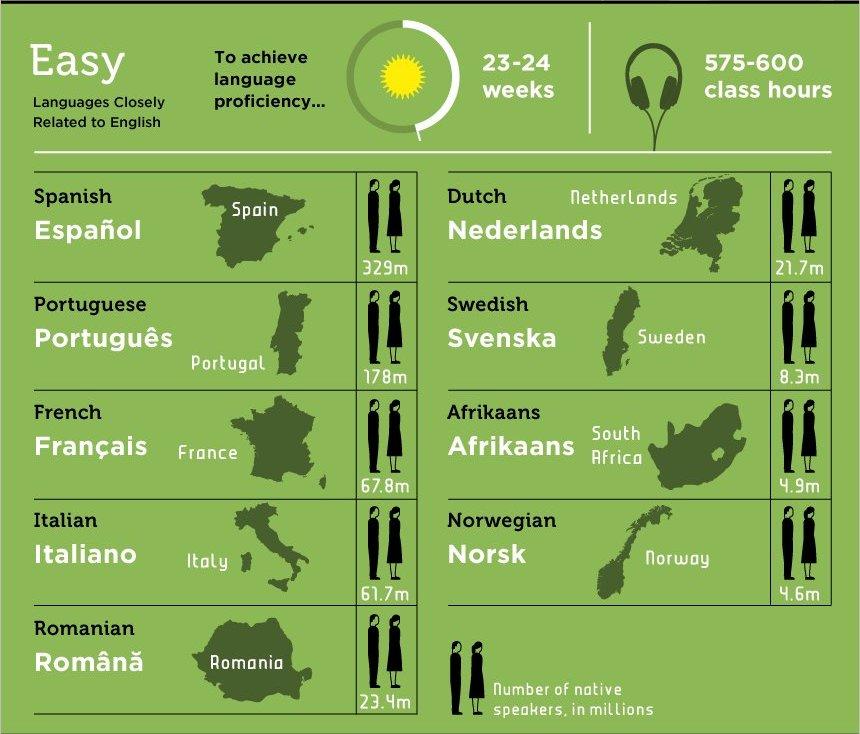 voxy language graphic.png - Copy