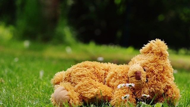 teddy-bear-792751_640