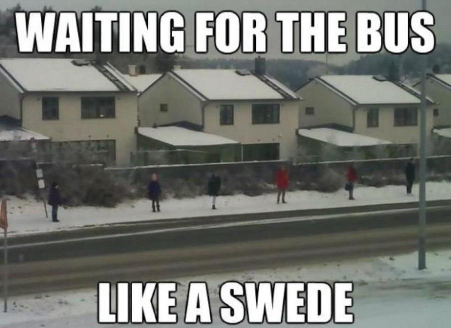 bus-like-a-swede-902x657